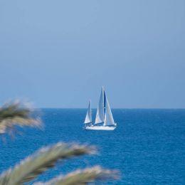 Championnat de Tunisie «Habitable» 2éme journée
